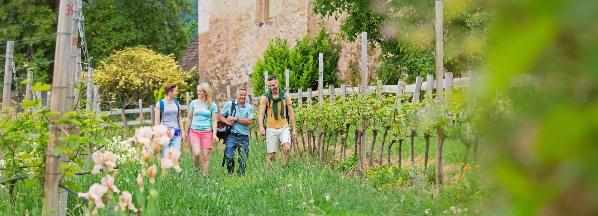 Active holidays in South Tyrol