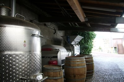 Winery Warasin Alois