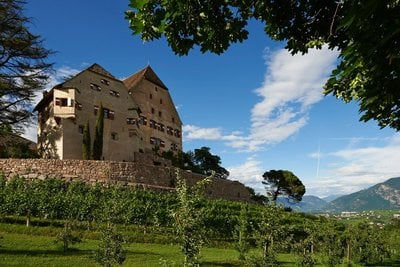 Wine growing estate Schloss Englar