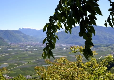 Foto Reportage | Walk to the three castles of Eppan / Appiano